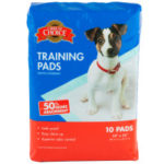 Gail Fisher's Dog Tracks House training isn't difficult if you are willing to be diligent