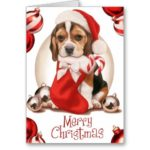 Beagle Christmas Cards Personalized