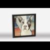 Boston Terrier Framed Oil Painting