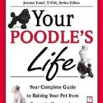 Poodles Video: Best toy poodle tricks!!!