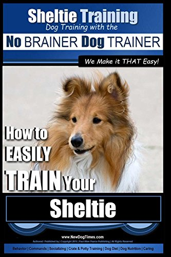 Sheltie Video: Poor rescue sheltie scared of rides in a car...