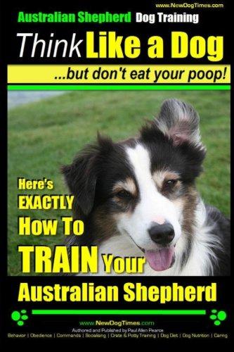 Australian Shepherd Training: Coaching Highly Intelligent Canines